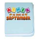 Asher is Due in September baby blanket