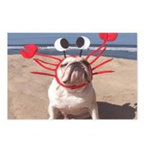 Lobster Dog Postcards (Package of 8)