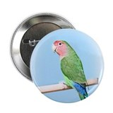 Peachfaced Lovebird Art Button