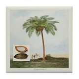 Coconut Tree Tile Coaster