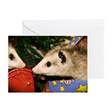 Possums in Presents Christmas Card