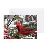 Cardinal Christmas Greeting Card