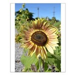 Beautiful Day Sunflower Small Poster