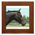 Show Horse Framed Tile