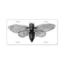 Cicada Aluminum License Plate
