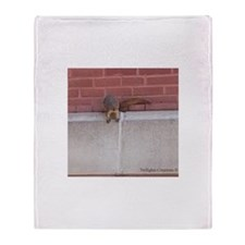 Hanging Out Squirrel Throw Blanket