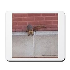 Hanging Out Squirrel Mousepad