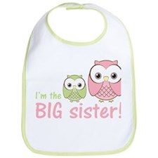 Big Sister Owl Pink/Green Bib