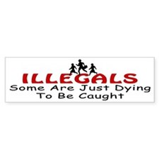 News Illegals Dying Bumper Bumper Sticker
