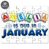 Amelia is Due in January Puzzle