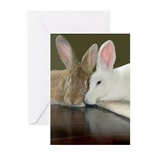 Bunny Valentine's Day Greeting Cards (Pk of 1