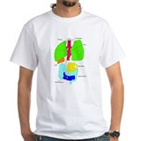 Organs of a Beer Belly T-Shirt