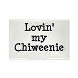 Lovin' My Chiweenie Rectangle Magnet (100 pack)