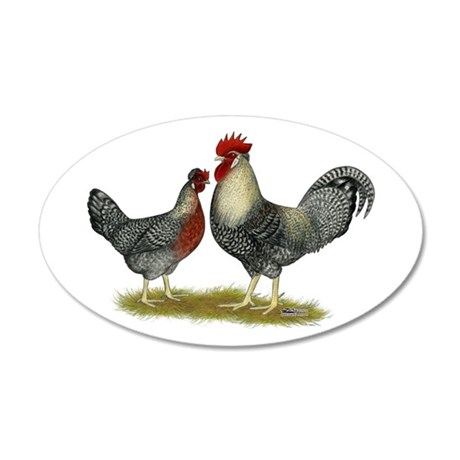 Legbar Cream Fowl 22x14 Oval Wall Peel