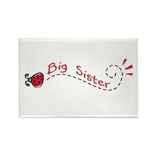 Big Sister Ladybug Rectangle Magnet (100 pack)