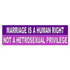 marriage human right... Bumper Stickers