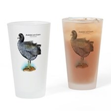 American Coot Drinking Glass