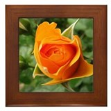 Yellow Rosebud Framed Tile