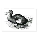 Dodo Nest Postcards (Package of 8)