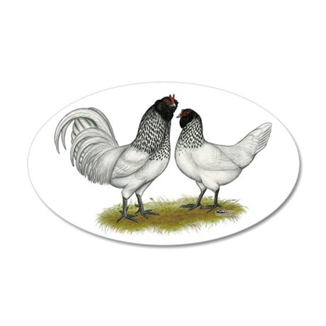 Owl Beard Chickens 22x14 Oval Wall Peel
