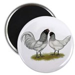 "Owl Beard Chickens 2.25"" Magnet (10 pack)"