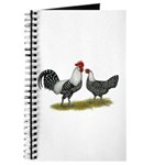 Brakel Chickens Journal