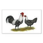 Brakel Chickens Sticker (Rectangle 50 pk)