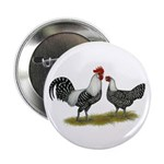 "Brakel Chickens 2.25"" Button (100 pack)"