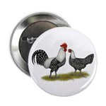 "Brakel Chickens 2.25"" Button"