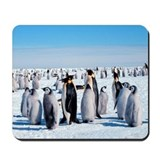 Family of penquins Mousepad