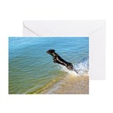 Boykin spaniel Greeting Cards (Pk of 20)