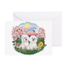 Blossoms-Two Bichon Frise Greeting Card