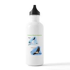 Cranes of North America Water Bottle
