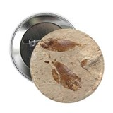 "Fish Fossil 2.25"" Button (10 pack)"