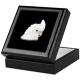 Goffin Cockatoo Keepsake Box