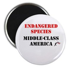 Middle-Class America Magnet