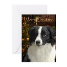 Holiday Border Collie Xmas Cards (Pk of 20)
