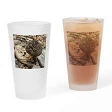 The Old Man Of The Woods Drinking Glass