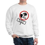 The Flood Plain Sweatshirt