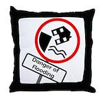 The Flood Plain Throw Pillow