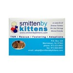 Smitten By Kittens Rectangle Magnet (10 pack)