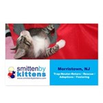 Smitten By Kittens Postcards (Package of 8)