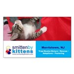 Smitten By Kittens Rectangle Sticker