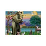 St Francis / Tab Tiger Cat Rectangle Magnet