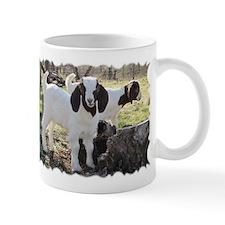 Texas country photos. Texas W Mug