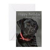 Funny birthday cards Greeting Cards