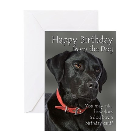 From the Black Lab Birthday Card
