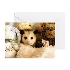 Possum and Stuffed Animals Card