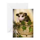 Possum in Wicker Basket Card
