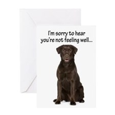 Chocolate Lab Get Well Card